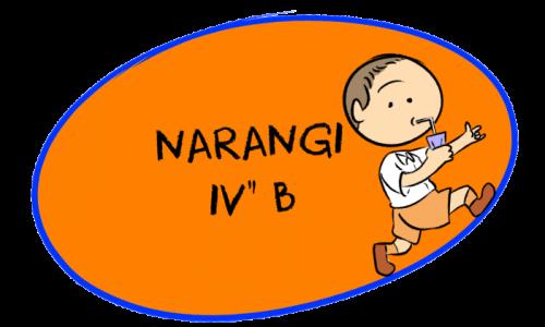Narangi Cover